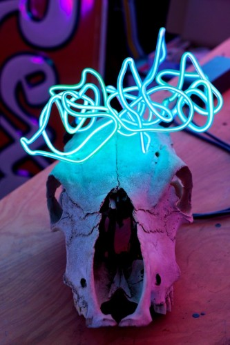K Greenberg Skull